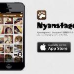 Instagramの猫の写真だけをただひたすら見たい!って時のアプリ『Nyanstagram』