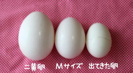 卵の中から卵!?生卵の中から殻付きの小さい卵が出てきてビックリした朝