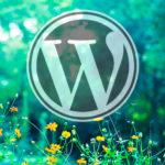 WordPressの更新時に「別の更新が現在進行中です」と表示された時の対処法は?