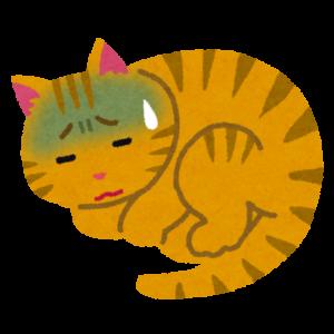 病気のネコ